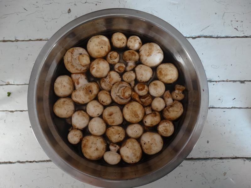 Восточные гренки из лаваша «Пальчики оближешь». Обычно их готовлю на завтрак, но и на праздничный стол не стыдно поставить